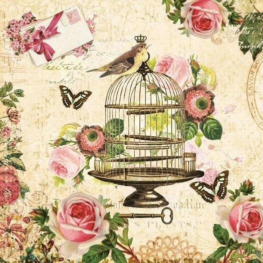 Χαρτοπετσέτα για Decoupage, Bird on a cage, 1τεμ