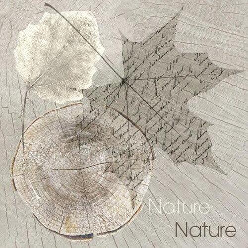 Χαρτοπετσέτα για decoupage, Sentimental Nature