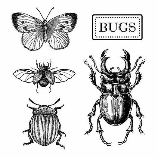 Σφραγίδα HD 10x10, Stamperia, Bugs