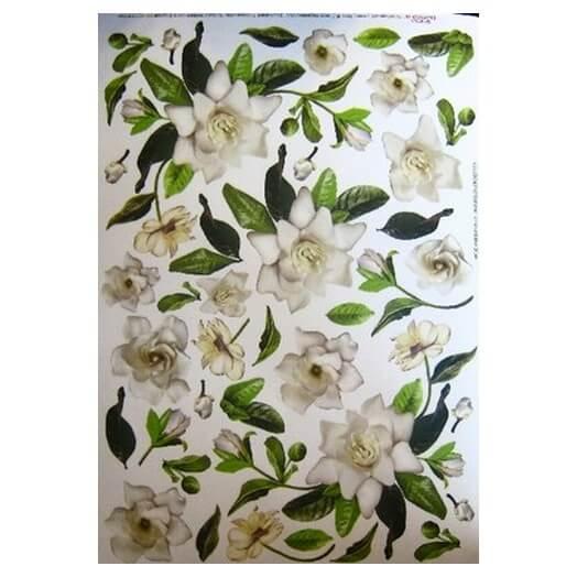 Χαρτί για Decoupage, Gardenia