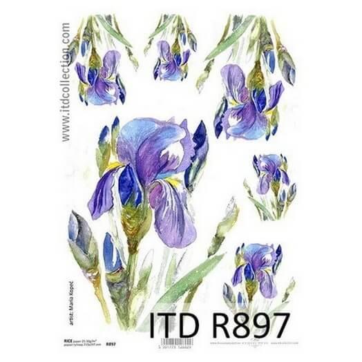Ριζόχαρτο ITD, 21x29cm R897