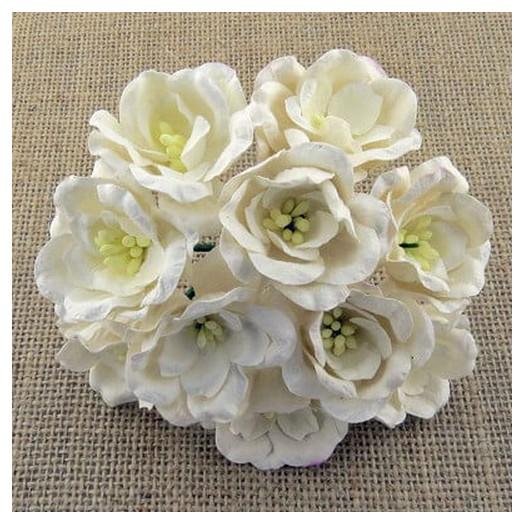 Λουλούδια WHITE MAGNOLIA, 35mm