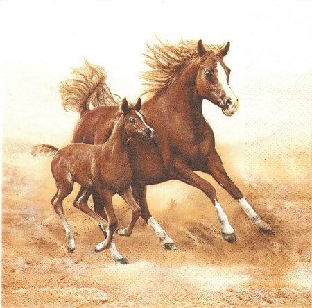 Χαρτοπετσέτα για Decoupage Mare with Foal, 1τεμ