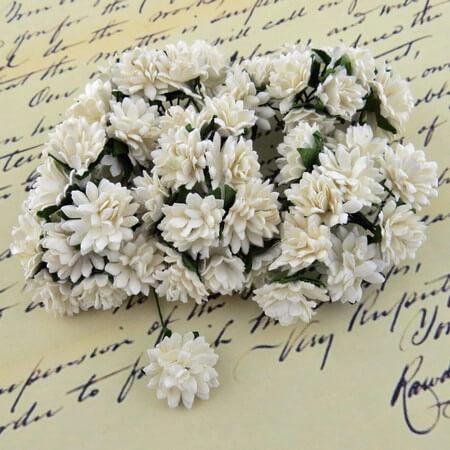 Λουλούδια ASTER DAISY STEM FLOWERS, 10mm