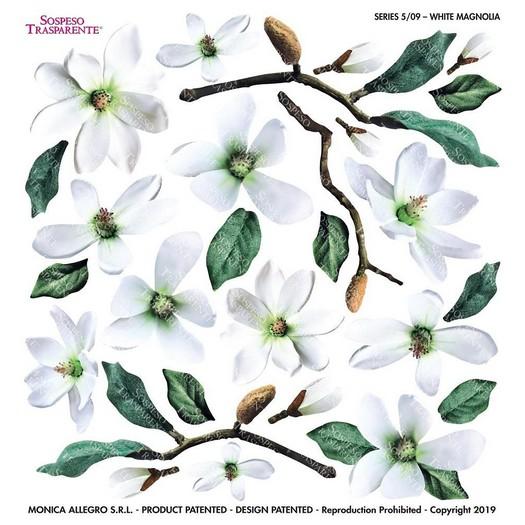 Τυπωμένo φύλλο-Ζελατίνη για Sospeso, White Magnolia