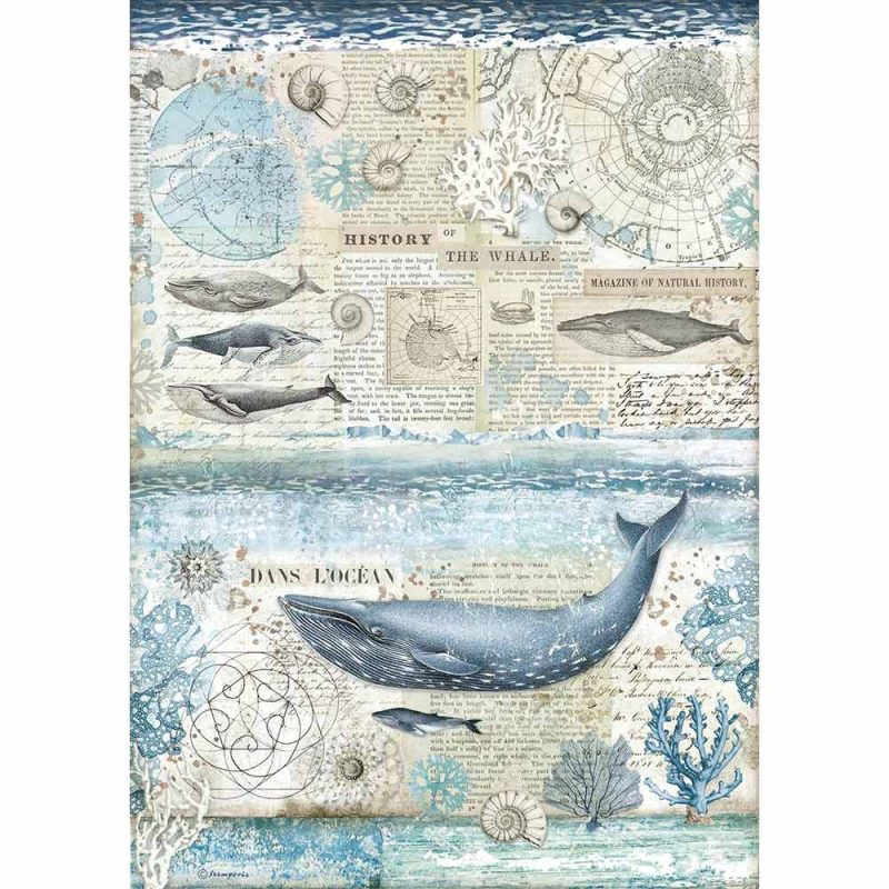 Ριζόχαρτο Stamperia 29,7x42cm A3, Wallpaper