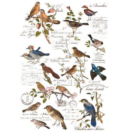Χαρτί Decor Transfer Prima Re-Design, Postal Birds 89x61cm