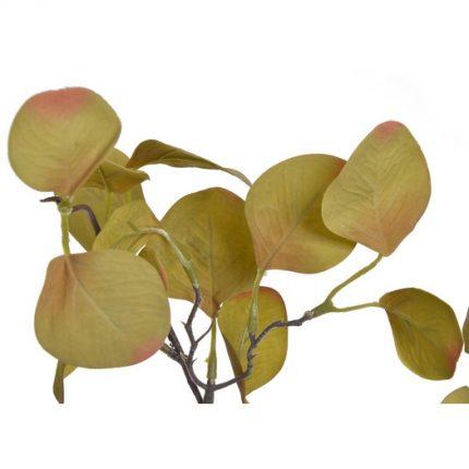 Ευκάλυπτος κλαδί, 70cm, autumn green