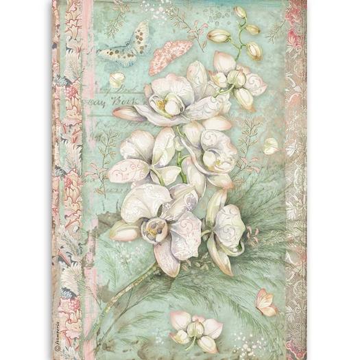 Ριζόχαρτο Stamperia 21x29cm A4, White Orchid