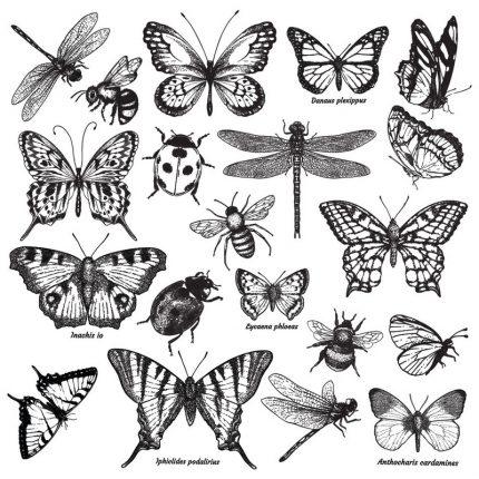 Σφραγίδα Re-design, Monarch Collection, 30,5x30,5cm