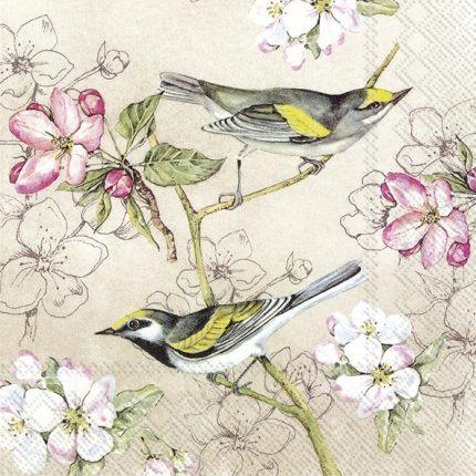 Χαρτοπετσέτα για decoupage, Birds Symphony, 1 τεμ.