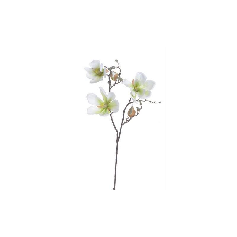 Κλαδί μανόλιας, 86cm, white