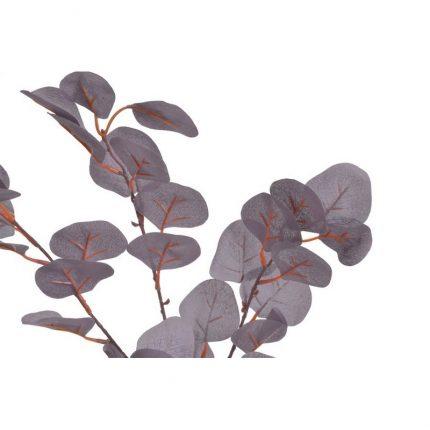 Ευκάλυπτος κλαδί, 90cm