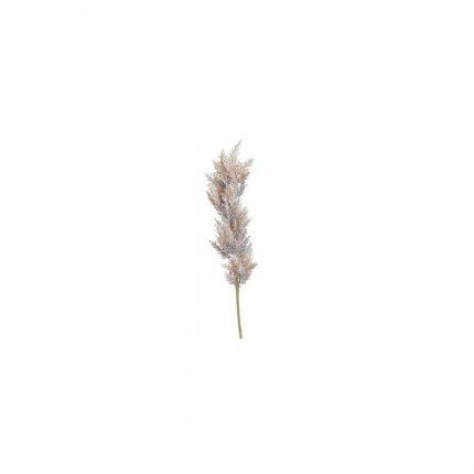 Κλαδί Pampas Grass, white, 100cm