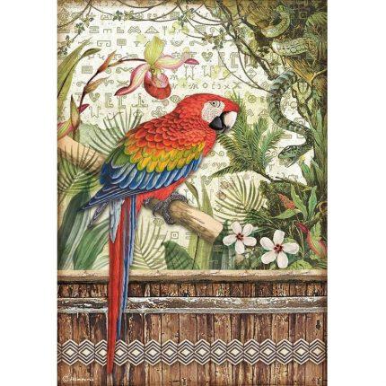 Ριζόχαρτο Stamperia 21x29cm, Amazonia, Parrot