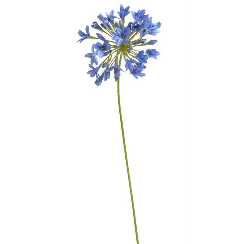 Κλαδί αγάπανθος, blue, 72cm