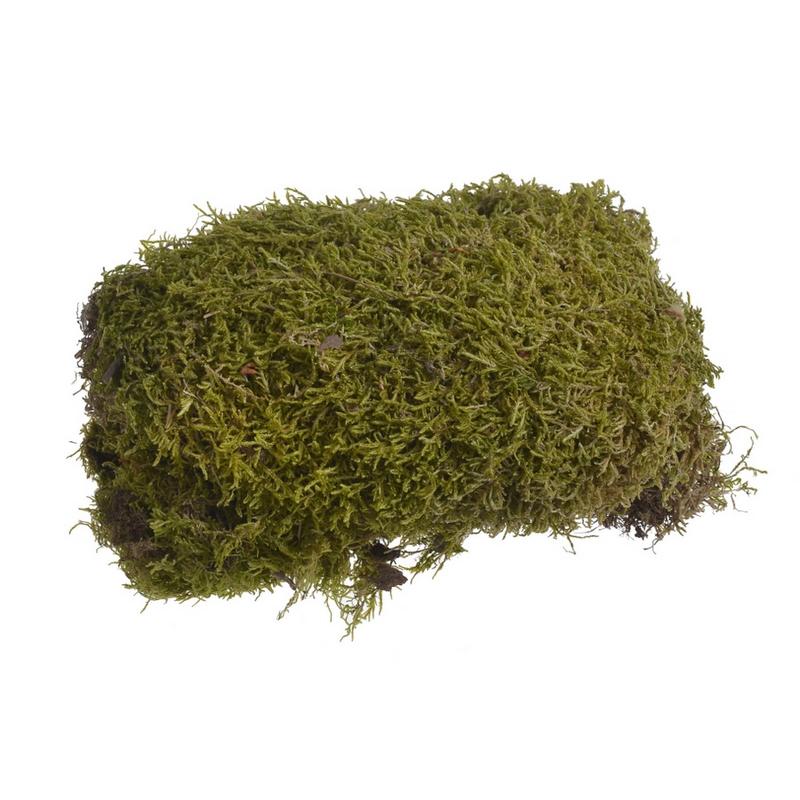 Flat moss green, πακέτο 100g