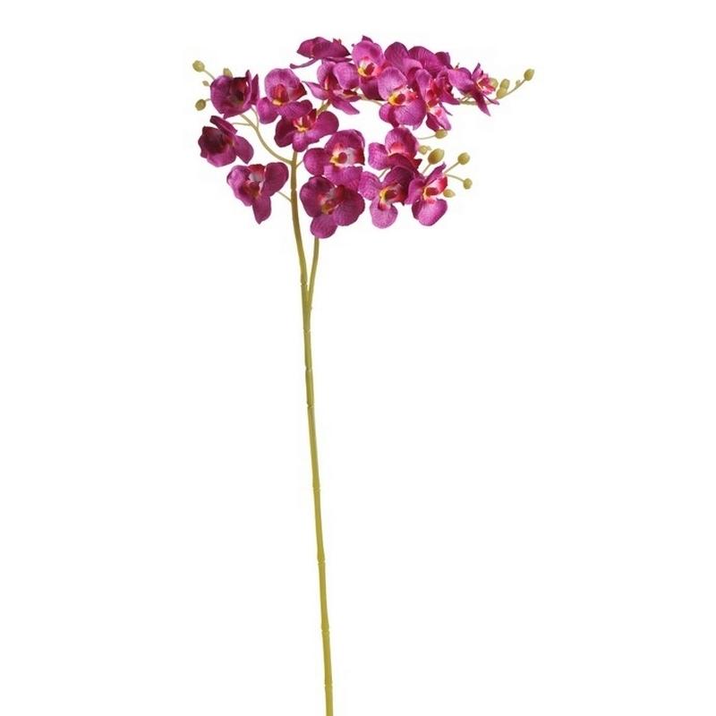 Ορχιδέα κλαδί, 76cm, pink