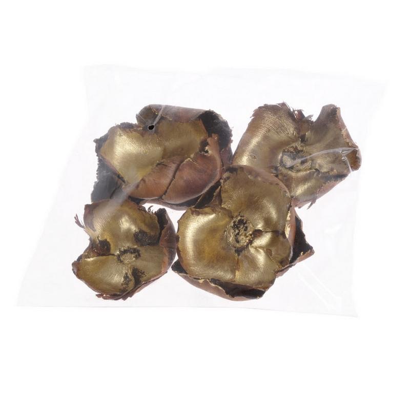 Μακρόφυλλα με φύλλωμα, 45-50cm, 3 τεμ.